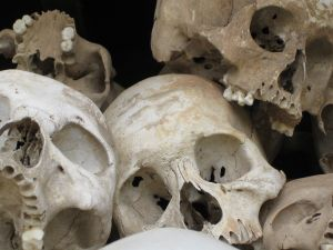 Dujovny Anth 1102 Forensic Anthropology In The Military