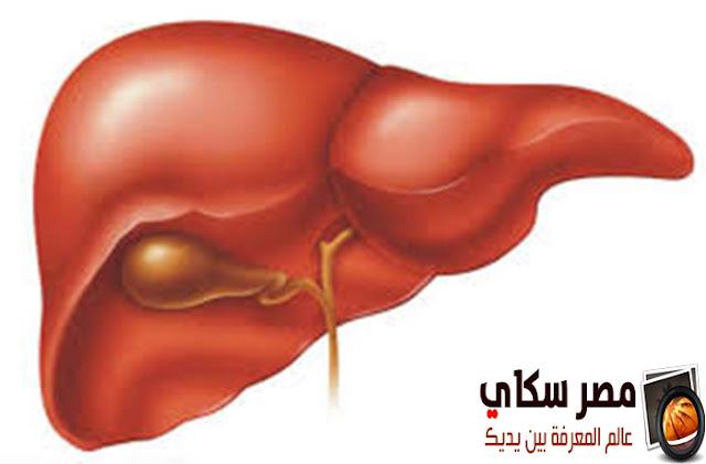 البنكرياس والكبد وكيف نحافظ عليهم ؟