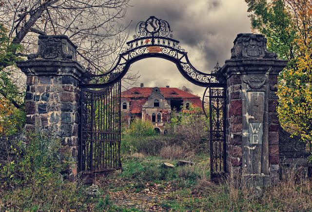 Era uma vez um grande palácio na Polônia, mas agora parece mais uma floresta