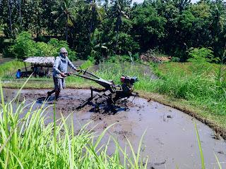 Method Of Farmland Preparation In Crop Production