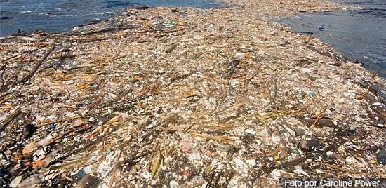 'Ilhas de lixo' no Caribe - Img 3