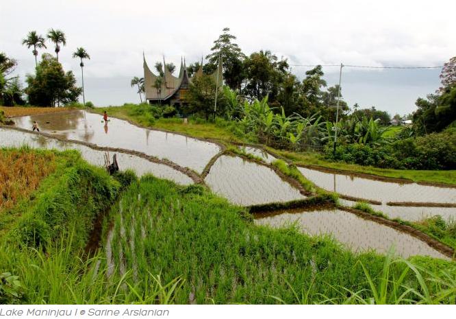 Danau Maninjau Keindahan Alam Indonesia