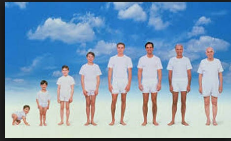 عضو وحيد في جسم الإنسان لا يكبر حجمه منذ الولادة إلى الشيخوخة! ل تعلم ما هو العضو الذي لا يتغير فيك ابداً!