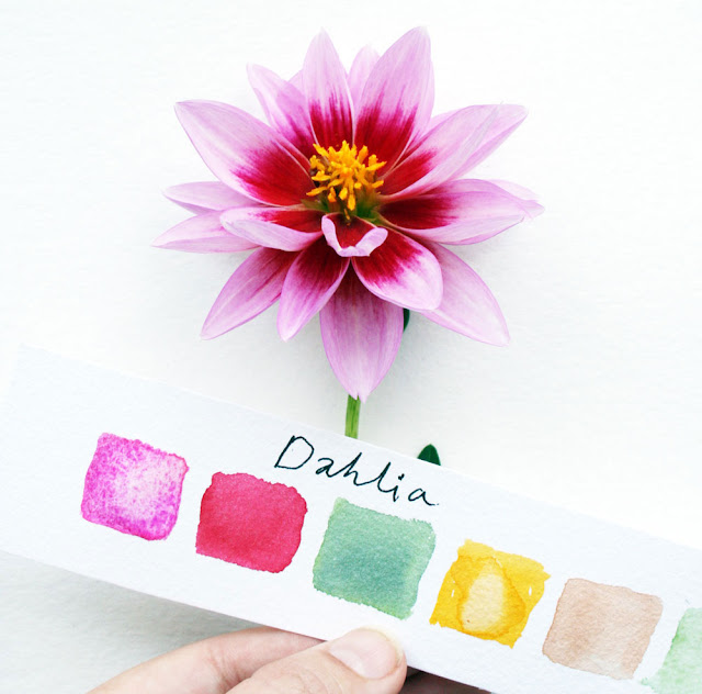 Louise Gale, Watercolor, Botanical color palette, dahlia, color