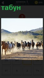 по полю бежит большой табун лошадей
