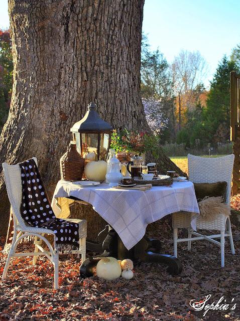 Autumn Breakfast Under The Old Oak Tree