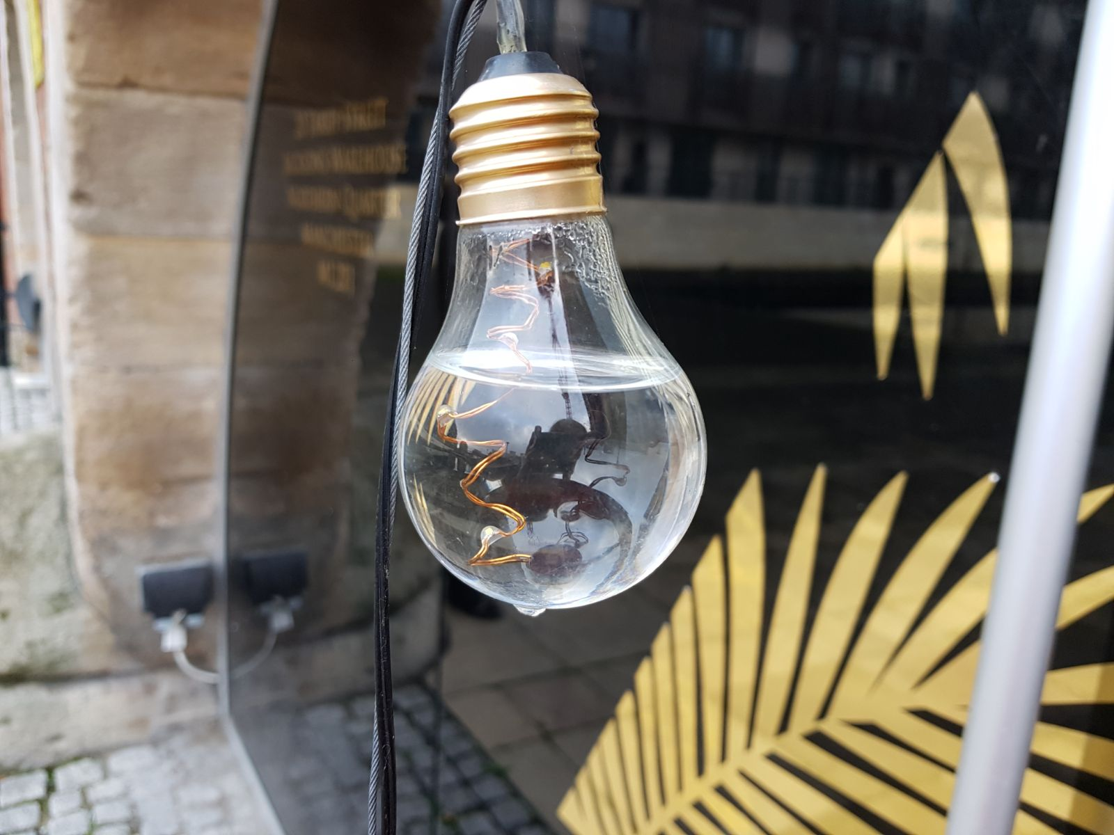 Weird lightbulb filled with water