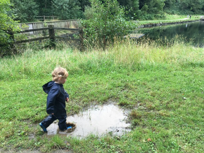 toddler-running-into-large-puddle-cwm-carn-forest