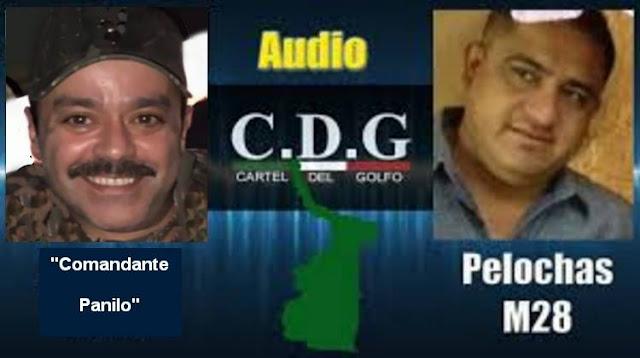 """Audio,"""" El Comandate Panilo"""" del Cártel del Golfo confirma caída de """"El Comandante Pelochas"""" o M-28"""