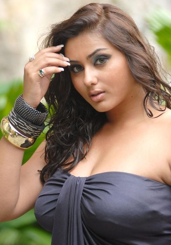 Tamil%2BActress%2BNamitha%2BHot%2BWallpapers5