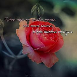 Frases Para Biografia Do Tumblr Lindas Frases De Amor
