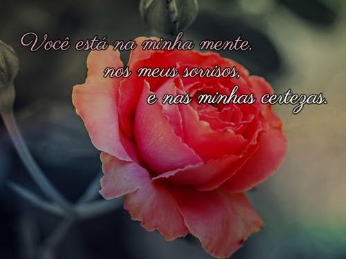 Frases de Amor com Fotos de Rosas