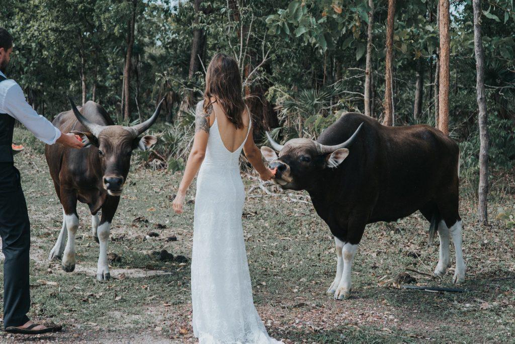 TO THE AISLE AUSTRALIA BESPOKE WEDDINGS
