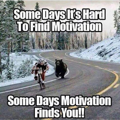 Some Days It's Hard To Find Motivation