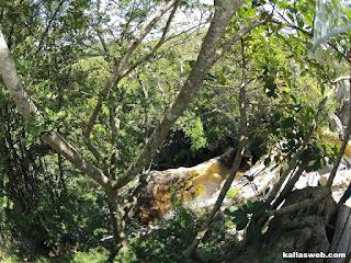Cachoeira do Comércio.