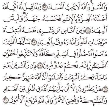 Tafsir Surat Al-Baqarah Ayat 206, 207, 208, 209, 210