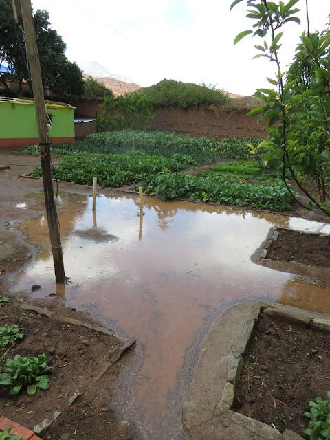 Der Pfarrgarten ist wieder gut gewässert