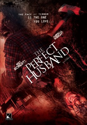 the perfect husband poster