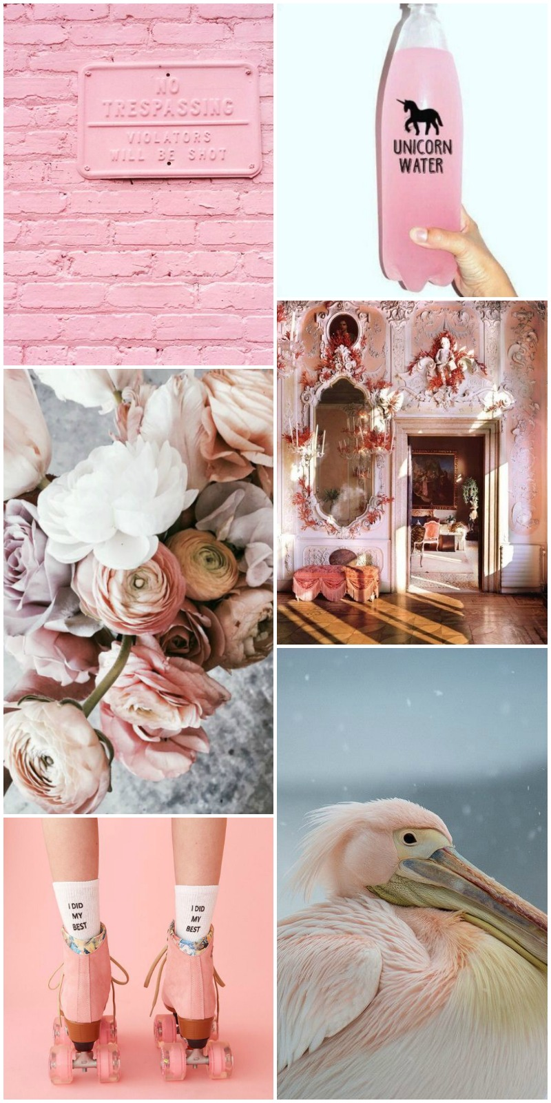 Collage. Decoración, Decor, Rosa, rose, pink