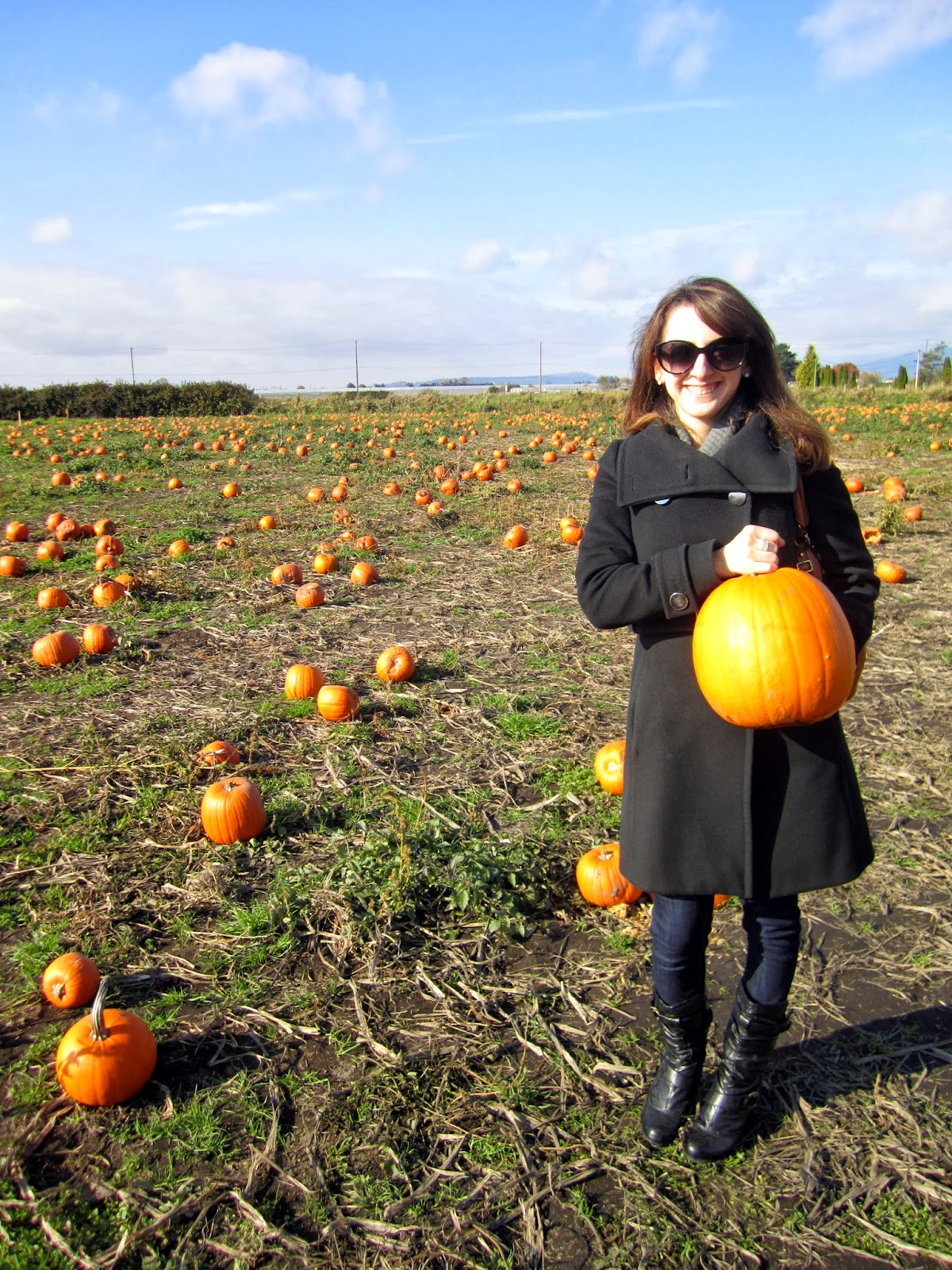 StyleLove, pumpkin, pumpkin patch, happy halloween, what to wear to a farm, fall jackets, fall style, fall outfits, artizia, evernew, smart set, le chateau, rosalia marie, happy halloween, style