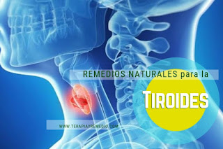 Remedios caseros para tratar la tiroides