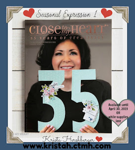 Get a FREE copy of the NEW Seasonal Expressions 1 Idea book  with 1st order placed online!