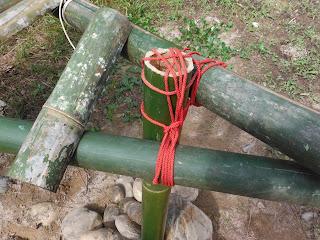 jungle survival shelter bamboo lashing