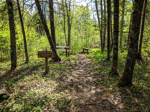Catlin Creek Campsite