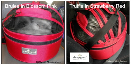 Brulee's pink and Truffle's red Sleepypod