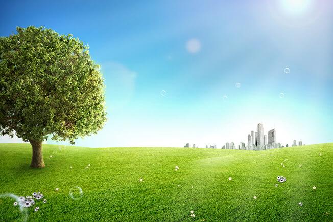 تحميل خلفية طبيعه خضراء وشجره