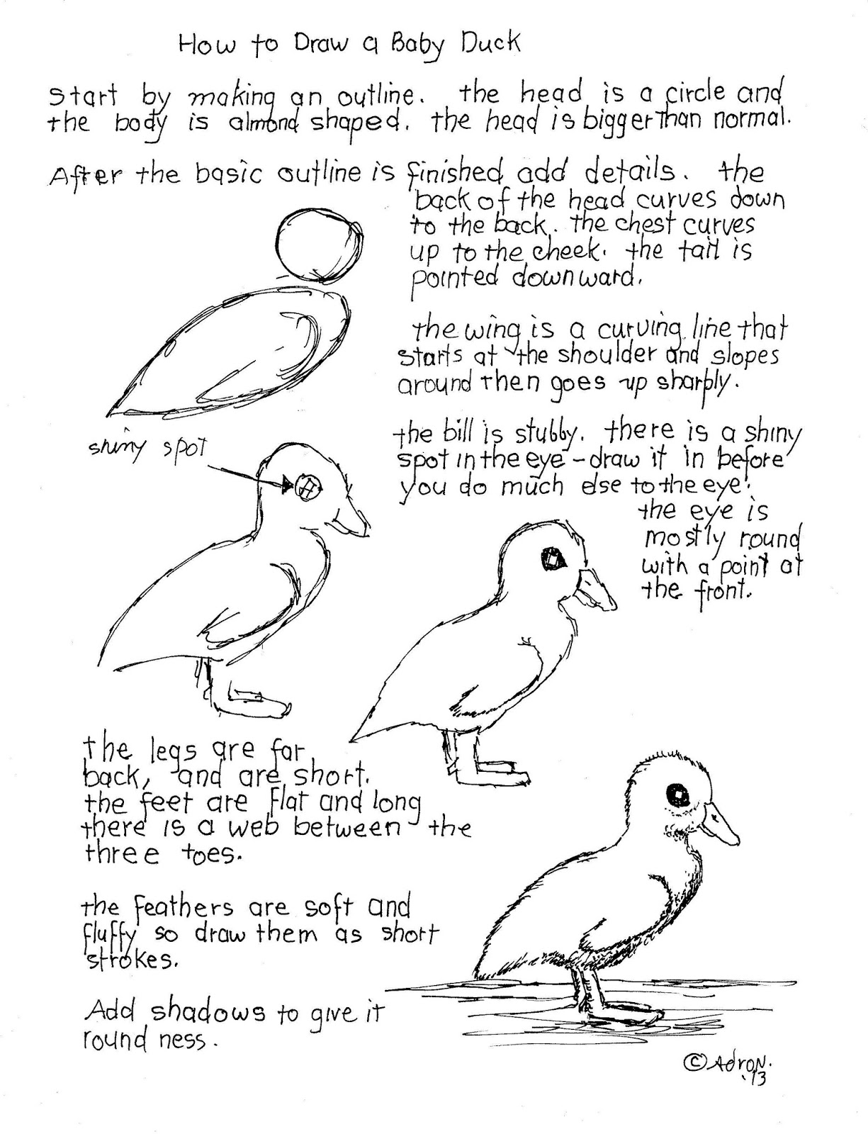 How To Draw Worksheets For The Young Artist How To Draw A Baby Duck Worksheet