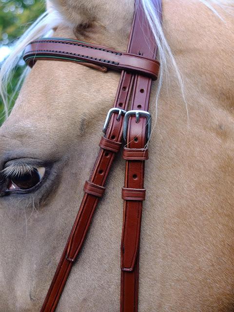 Testiera Bitless artigianale fatta su misura in pelle marrone chiaro con dettagli in pelle verde e cuciture in filo verde