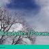 """""""Força de Expressão"""" #5- A Decisão [Poema]"""