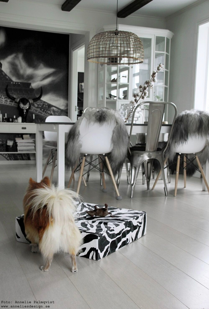 annelies design, webbutik, webshop, hundbädd, puff, zebra, hundsäng, hund, pomerian, pappillon, hundpuff, säng,