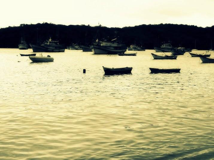 Praia do Araçá, Porto Belo