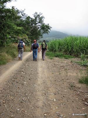 Acercándonos a la barranca sin nombre en el Cerro Grande de Ameca