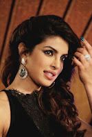 priyanka chopra upcoming movie maidamji in 2017,upcoming movie of priyanka chopra maidamji poster,release date of maidamji