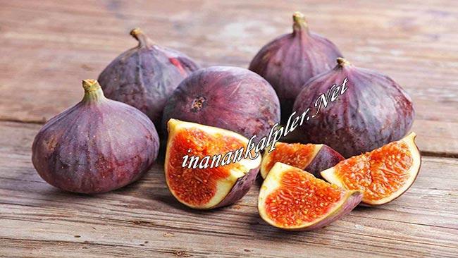 Kolesterol Ve Yüksek Tansiyona Karşı İncir - www.inanankalpler.net