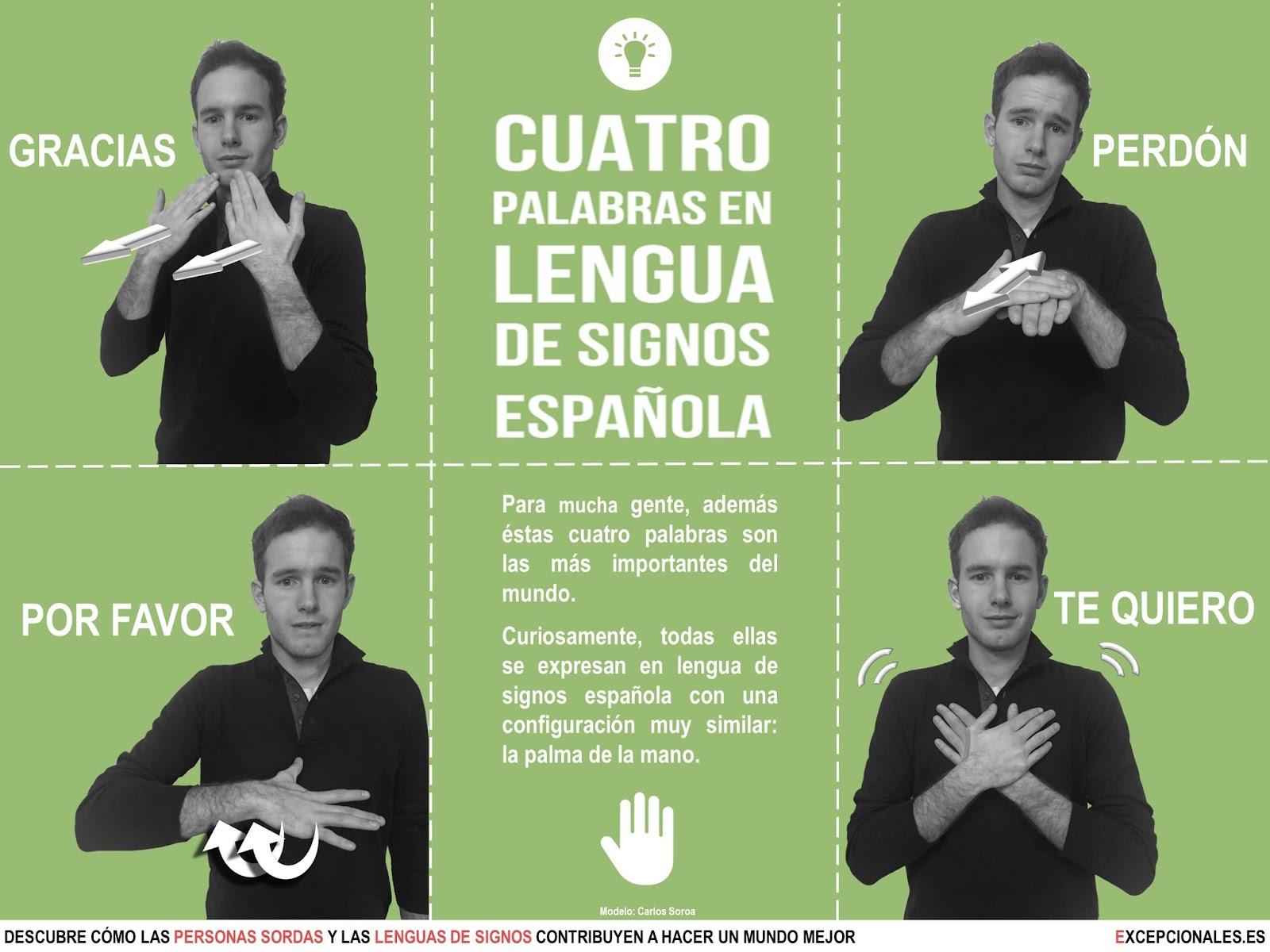 Infografía: Cuatro Palabras En Lengua De Signos Española