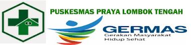 Blog UPTD BLUD PUSKESMAS PRAYA Lombok Tengah Selesai di kerjakan