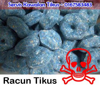 Servis Kawalan Tikus - 0167583483