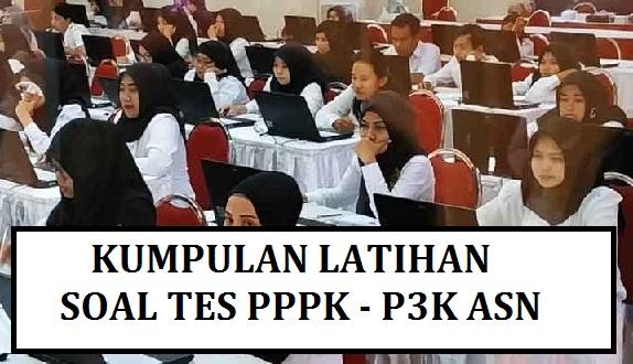 Contoh Soal Tes Seleksi PPPK 2021 (Contoh Soal Tes P3K 2021-2022)