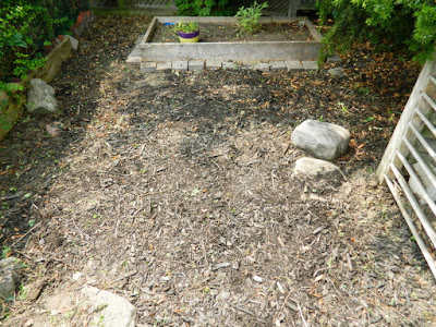 Leslieville Front Garden Cleanup After by Paul Jung Gardening Services--a Toronto Organic Gardening Company