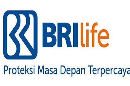 Lowongan PT. Asuransi BRI Life Pekanbaru November 2018