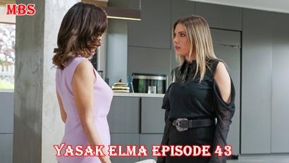 Yasak Elma episode 43