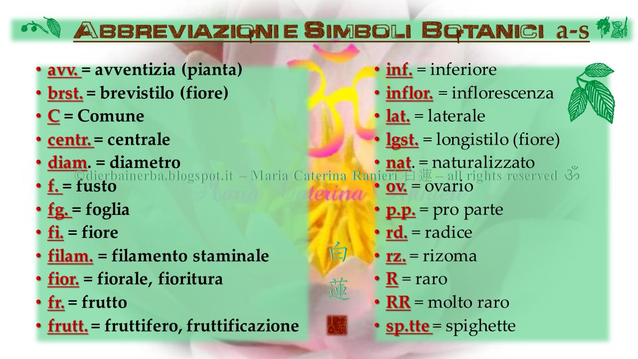 A Cura Di Maria Caterina Ranieri