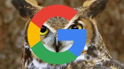 proyek-google-owl.jpg