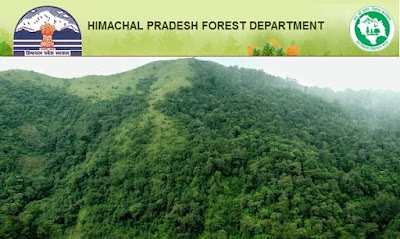 HP Forest Guard Answer Key 2016