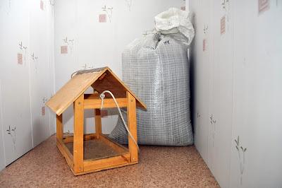 Кормушка и мешок семечек