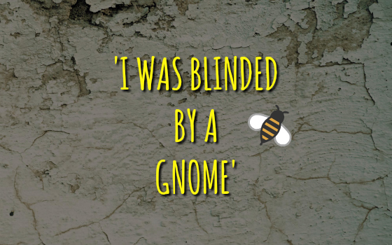 'I Was Blinded By A Gnome'
